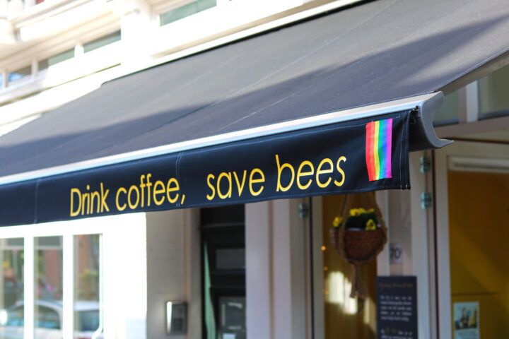 Drink coffee save bees